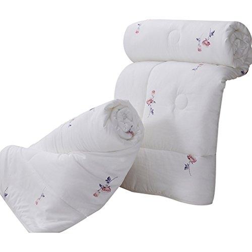MMM Combo quatre saisons plus épais garder chaud couette hiver individuel Double couette Core Dorm Room Bedding ( taille : 150*200cm(3.65kg) )