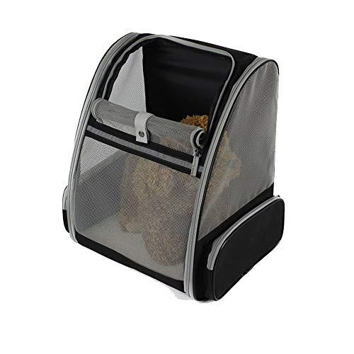 Haustier Tasche FXJCWB Soft-Sided Pet Carrier-Rucksack für kleine Hunde und Katzen Von der Fluggesellschaft zugelassen, für Reisen, Wandern, Spazierengehen und den Einsatz im Freien konzipiert -