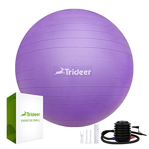 Trideer Ballon Suisse de Gym avec Pompe, 500KG Anti-Éclatement/Plusieurs Options de Couleurs