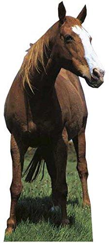 Mustang-Pappaufsteller von Star Cutouts.