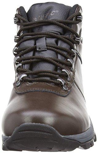 Hi-Tec Eurotrek II Chaussure De Marche - AW15 Marron (Dark Chocolate)