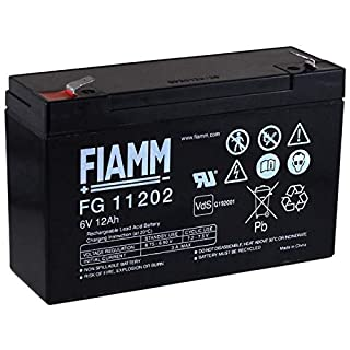 akku-net FIAMM Ersatzakku für Kinderfahrzeuge Kinderauto Kinder-Quad 6V 12Ah (ersetzt auch 10Ah), 6V, Lead-Acid