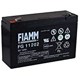 FIAMM Recambio de Batería para Vehículos para niños Coche Infantil Quad 6V 12Ah (Reemplaza también 10Ah)