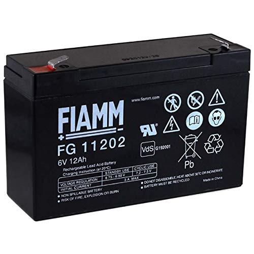 FIAMM Batteria ricaricabile da cambio per Scooter carrozzelle scooter elettrico auto elettrica 6V 12Ah (sostituisce anche 10Ah)
