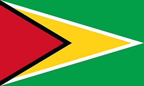 Guyana | Querformat Fahne | 0.24m² | 40x60cm » Fahne 100% Made in Germany ()