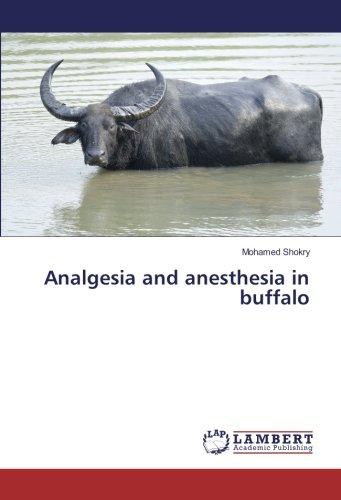 Analgesia and anesthesia in buffalo por Mohamed Shokry