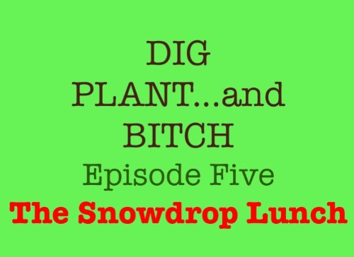 the-snowdrop-lunch-5-dig-plant-and-bitch-the-soap-opera-for-gardeners-english-edition