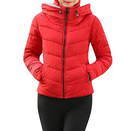 Coats Damen Mode Frauen Langarm MYMYG Frauen Oberbekleidung Kapuzenmantel Kurze dünne Baumwolle gefütterte Jacken Mäntel(Rot,EU:44/CN-3XL)