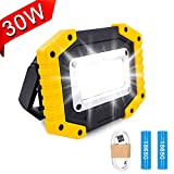 Trongle LED Rechargeable Work Lights, 30W Floodlight Battery Security Light with 3 Modes Outdoor COB Floodlight Camping Lights with USB Waterproof for Garage, Fishing, Hiking(Batteries Included)