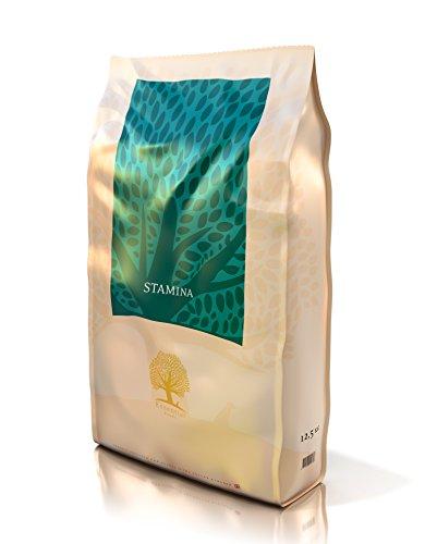 Essential Foods Stamina, 1er Pack (1 x 12.5 kg) -