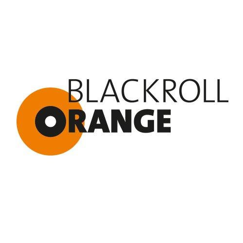 Blackroll Orange (Das Original) – DIE Selbstmassagerolle – ZUBEHÖR-SET inkl. Übungsbooklet - 3