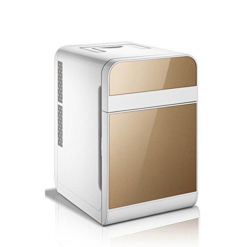 GEXING Auto Kühlschrank 20L Kühlschränke Mini Kühlschränke Auto Kühlschrank Auto Dual-Use Kleine Box Auto-Single-Door-Dual-Use,B-20L -