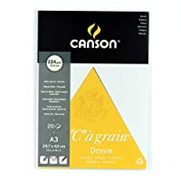 Canson Drawing book, 224 g, 20 A3 Papers