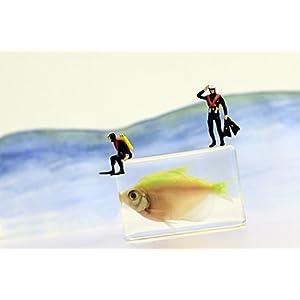 Coole witzige Postkarte | Zwei Taucher vor dem Tauchgang mit Fisch
