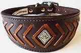 35,6–43,2cm braun–Tan Fisch Knochen Leder Whippet Greyhound Halsband