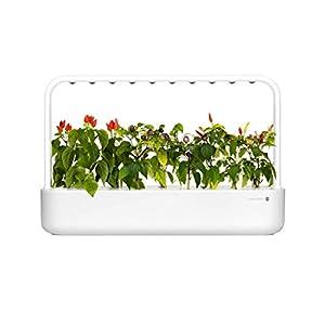 Emsa M5261900 Click & Grow Smart Garden 9 Indoor-Garten, passend für 9 Kräuterkapseln, weiß