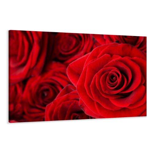 bestpricepictures 120 x 80 cm Bild auf Leinwand Rose 5058-SCT deutsche Marke und Lager - Die Bilder/das Wandbild/der Kunstdruck ist fertig gerahmt