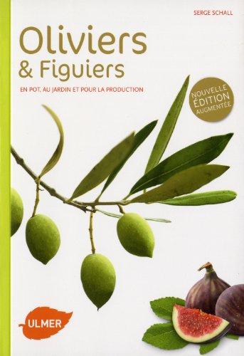 oliviers-et-figuiers-ne-en-pot-en-jardin-et-pour-la-production
