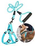 Supet Hundegeschirr Step-In Nylon in vielen Farben & Größen für kleine, mittelgroße & große Hunde | Geschirr Hund klein groß verstellbar | Brustgeschirr Welpen Auto Katzengeschirr