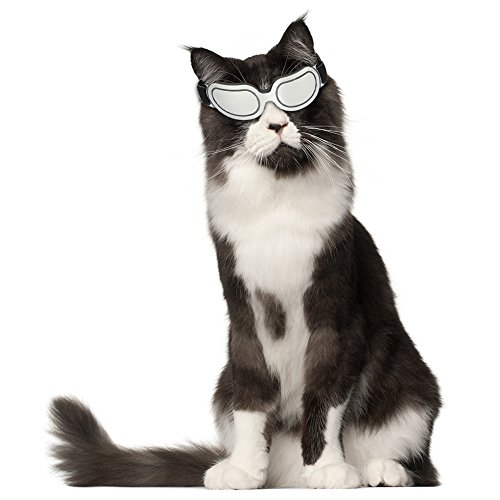 BABYS'q PET Sonnenbrille, Winddichte UV-Schutzbrille Strahlenschutz Im Freien, Für Kleine Mittlere Hunde,Silver