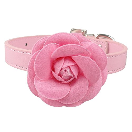 r Hundehalsbänder Niedliche Halskette Mit Blume Für Kleine Hunde Welpen Rosa Rot Lila Blau Rose Neck Für 8-18, Rosa, M ()