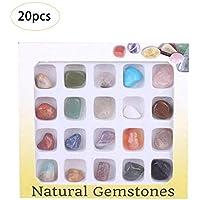 Juego de 20 piezas de colección de rock Science con caja de colección, muestras de roca natural para estudiar geología y ciencia de la tierra