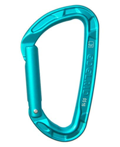 Edelrid Unisex– Erwachsene Karabiner Pure Straight VPE5, Icemint (329) One Size