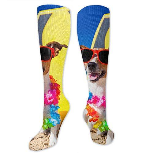 Wfispiy Dogs Funny Jack Russell Terrier Glasses Women&Men Socks Dress Socks Length 19.7in/Width 3.4in Polyester Material Knee High Socks Girls Socks Mid Stockings Personality Socks