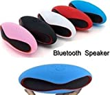 #1: Bluetooth Wireless Speaker ( RANDOM COLORS )