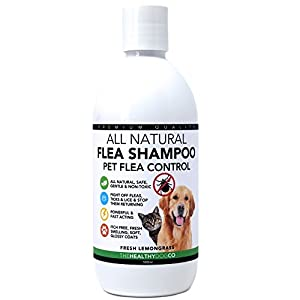 All-Natural-Flea-Shampoo-for-Dogs-Cats-Lemongrass-500ml-Powerful-Safe-Formula-The-Best-Wash-Treatment-to-Kill-Control-Fleas-Ticks-Lice