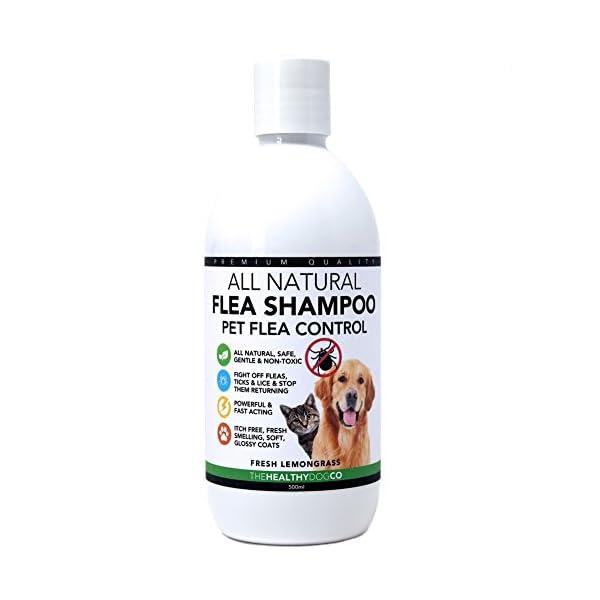All-Natural-Flea-Shampoo-for-Dogs-Cats-Lemongrass-500ml-Powerful-Safe-Formula-The-Best-Wash-Treatment-to-Kill-Control-Fleas-Ticks-Lice