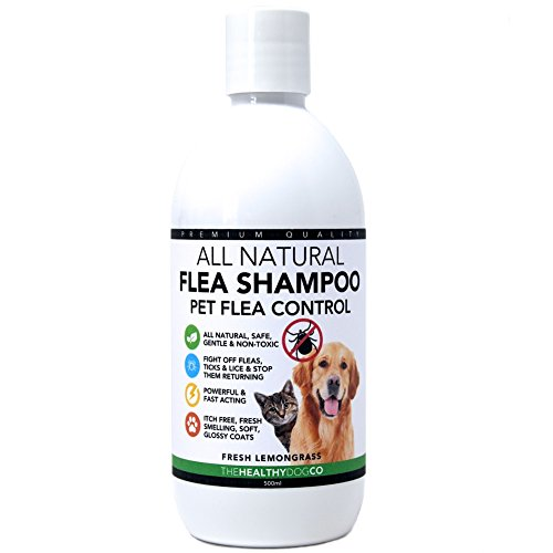 The Healthy Dog Co All Natural Shampoo Antipulci | Citronella | 500ml | Il Miglior...