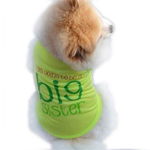 Smniao Sommer Haustier Hund Kleidung I Am Going to Be a Big Sister Muster Weste T-Shirt für Kleine Hund Welpen Kostüme (M, Grün)