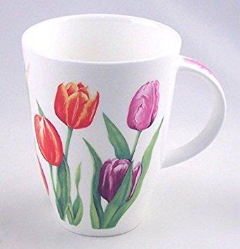 Red Tulip Chintz Feinen Englisch Bone China Tasse, groß 14Unze Louise Form-England Staffordshire Fine Bone China