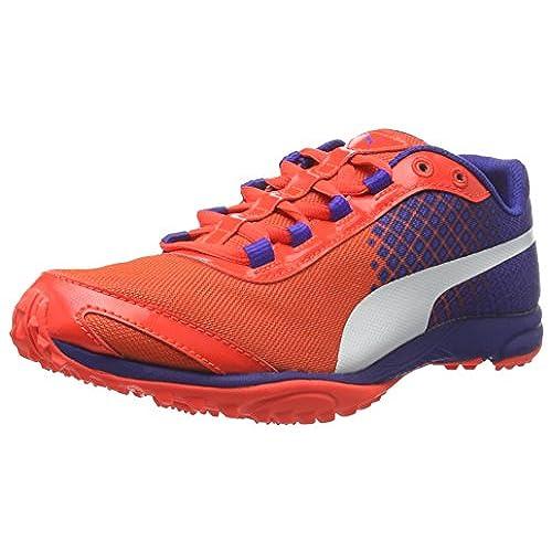 Puma Women's Evospeed Haraka v3 Wn Running Shoes, Red-Rot (Red Blast-Royal  Blue White 01), 7