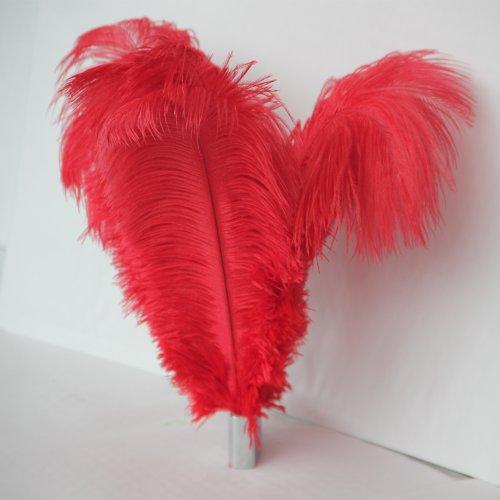 10-piezas-de-color-rojo-de-bienes-de-plumas-de-avestruz-natural-para-decoraciones-de-la-boda-1214-pu