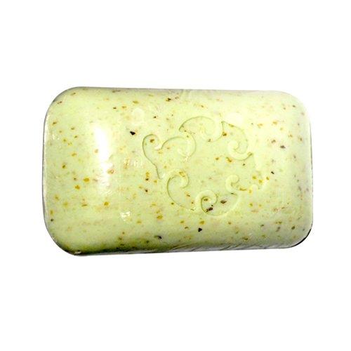 Baudelaire Hand Soap Loofa Mint -- 5 oz by Baudelaire