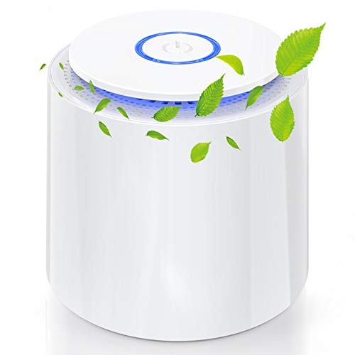 Air Purifier Update SY-701 Porta...