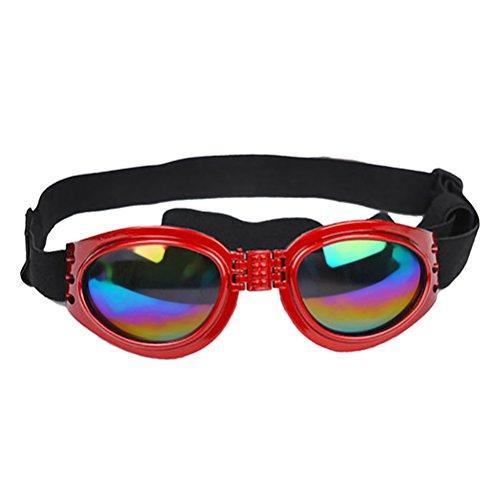 iHOY Hundesonnenbrille Haustier-Hundeschutzbrillen UV Sonnenbrillen Goggles Hundebrillen Sonnenschutz Brillen Winddichte Hund Brille Für Haustier Hun (Rot)
