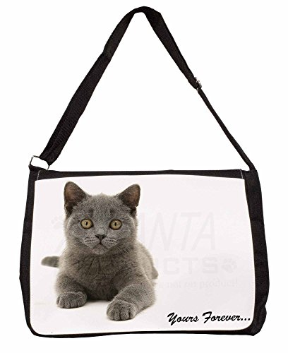Silver Blue Cat 'Yours Forever' Large 16