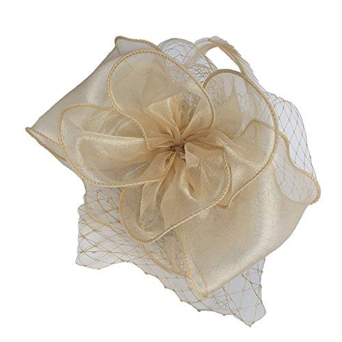 Gazechimp Damen Fascinator Haarband aus Organza Mesh - Champagner (Champagner-mesh)