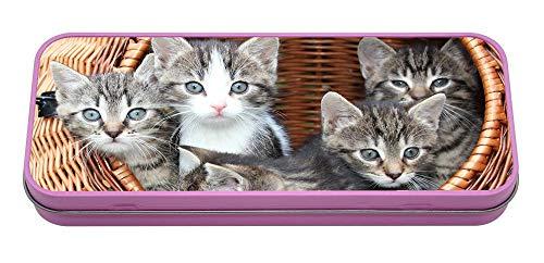 Kätzchen in Korb, Metall, Pink -