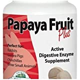 Oxbow Fruit Plus Tablets - Papaya - 90 ct, oxbow papaya tablets, enzyme papain, that petplace
