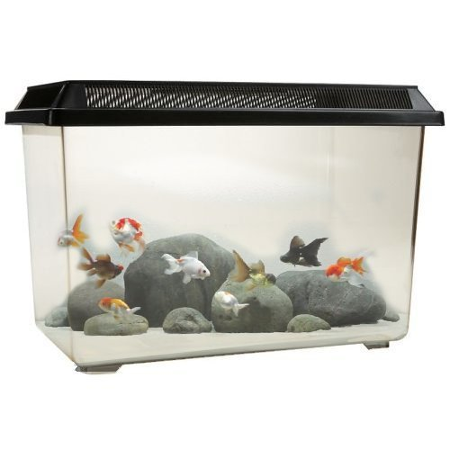 ocean-free-pt068-goldfish-12l-fish-tank-bowl-starter-kit-reptile-vivarium-turtle-tank-or-breeding-bo