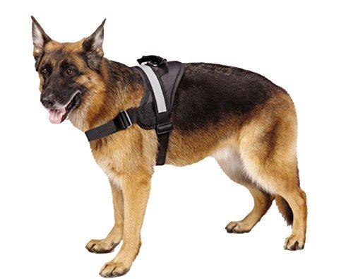 Arnés para perro grande, suave, sin tirones, reflectante.