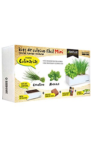 Huerto Urbano - Seed Box Mini Culinarias - Batlle