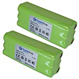 2x Trade Boutique Premium Batterie Ni-MH, 14,4V/2500mAh/36WH pour Dirt Devil...