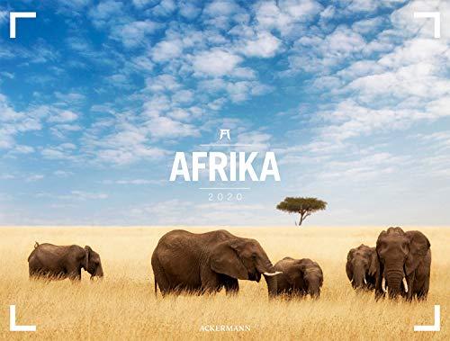 Afrika - Ackermann Gallery 2020, Wandkalender im Querformat (66x50 cm) - Großformat-Kalender / Hochwertiger Panorama-Kalender Tiere und Natur