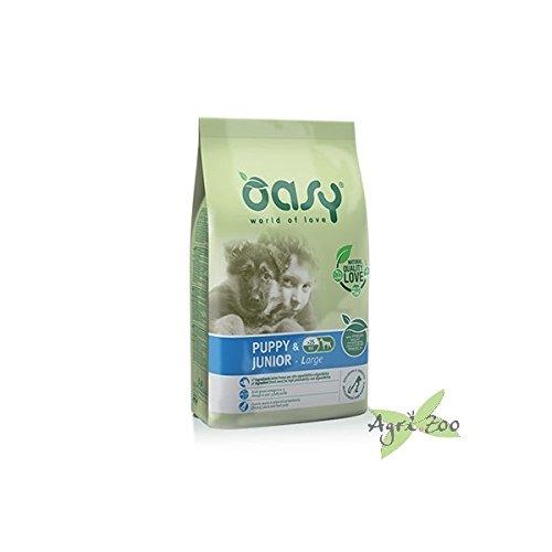 Oasy Alimento Secco Per Cane Adult Medium 12 kilogrammi