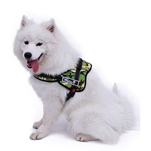 Xinanlongjb sichere Leitungen für Großen Hund Luxus Verstellbare Kabelbaum Große Größe Hundegeschirr Pet Hot Produkt 3 Farben 5 Größen (Color : Multi-Colored, Size : L)